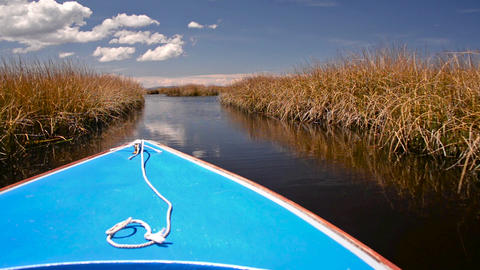 Boat Passing through Reeds Footage
