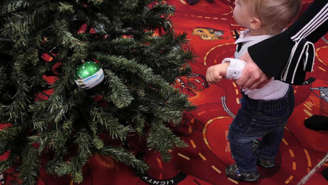 Toddler supported with mother hands touching Christmas tree Live Action