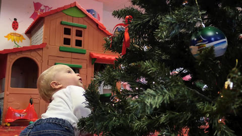 Followed with camera cute toddler crawls around Christmas tree among festive Footage