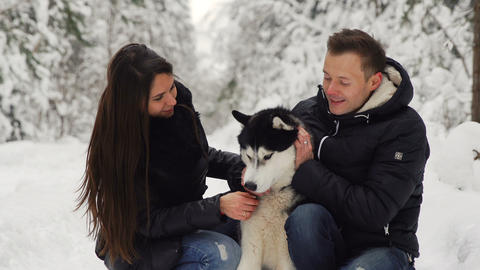Family couple man and woman sitting in the woods hugging their favorite Siberian Footage