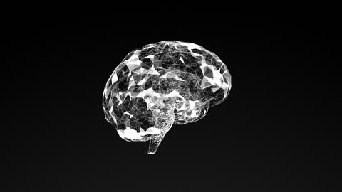 3D model of human brain, abstract geometric composition Animation