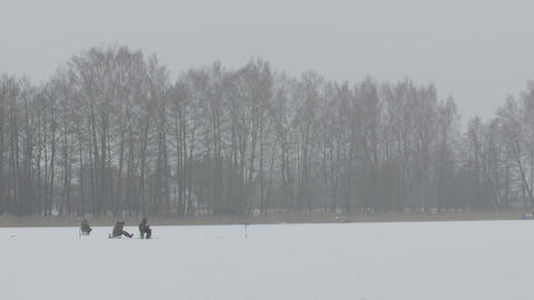 Many fishermen are fishing. Ice fishing Footage