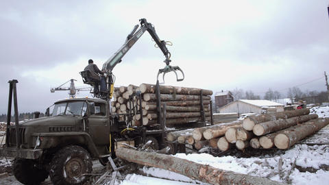 Crane claw loader unloads wood logs from heavy truck at sawmill facility Live Action