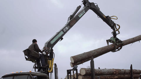 Mechanical claw loader unloads wood logs from heavy truck at sawmill factory Live Action