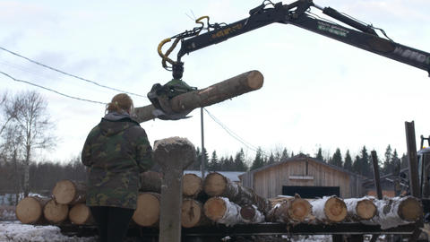 Lorry claw loader unloads timber logs from heavy truck at sawmill facility Footage