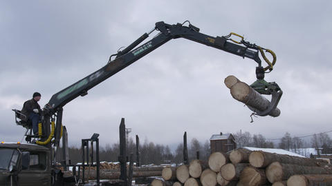 Crane claw loader unloads lumber logs from heavy truck at sawmill factory Live Action