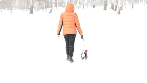 A woman in an orange jacket walks with a little dog during snowfall 영상물