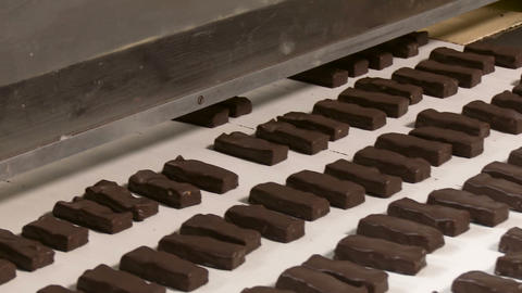 Sweets on a chocolate factory conveyor Live Action