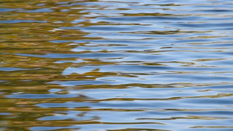 Fast running colorful ripples on water surface Footage