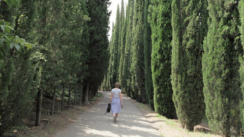Young girl walks in cypress alley in Tbilisi botanical park - Georgia Footage