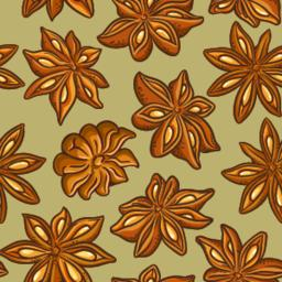 anise vector pattern ベクター