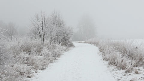 Beautiful winter landscape. Scenic winter landscape. Winter foggy landscape Footage