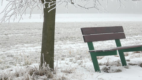 Bench in the snow in winter landscape. Foggy winter scene and green bench 画像