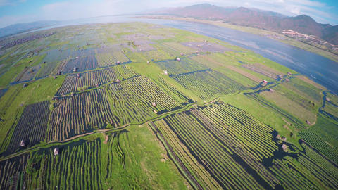 Flying over floating gardens on Inle Lake Footage