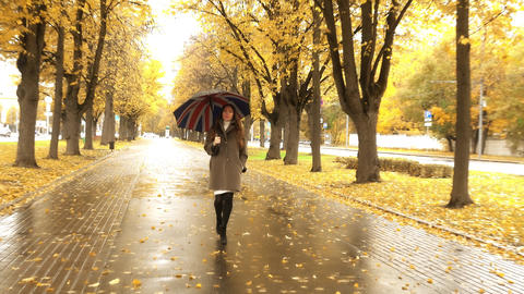 Beautiful pregnant woman walking with umbrella along autumn alley on a rainy day Footage