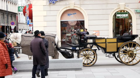 Traditional horses and carriage in Vienna, Austria Photo