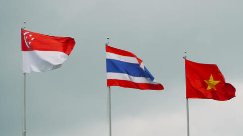 Southeast asia countries flags waving on gray sky Footage