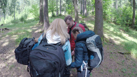 Teen friends travelers looking at the map planning to trekking through forest Footage