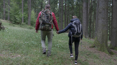 Young sportive couple with backpacks taking a walk through mountain forest hand Live Action