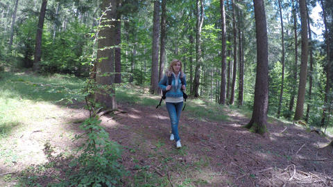 Eco friendly young woman walking alone in forest admiring nature on sunny day Live Action