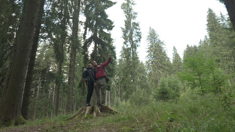 Travel hiking selfie taken by beautiful active couple standing on stump tree Footage