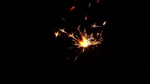 Close up one firework sparkler over black Live Action
