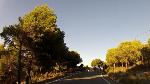 Forest road POV from car moving at sunset, timelapse Stock Video Footage