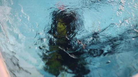underwater 20 Stock Video Footage