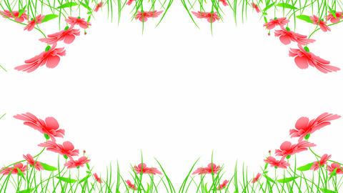 floral designs Stock Video Footage