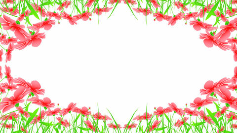 Floral Designs stock footage