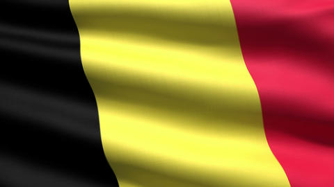 Belgian flag Stock Video Footage