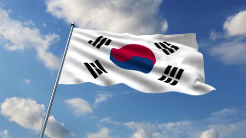 South Korean flag Stock Video Footage