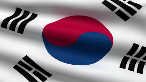 South Korean flag Stock Video Footage