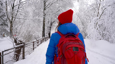 Woman walks along a path among the beautiful winter snow-covered landscape Footage