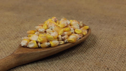 Close-up, spoon rotation with a pile of corn grains lying on burlap Footage