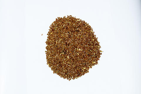 Flax seeds. Storage of flax seeds. Flax, essential oil culture. A handful of フォト