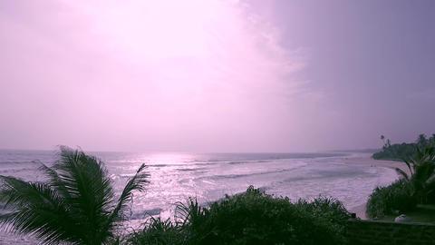 Indian Ocean, sun, palm trees, waves, wind, beaches Archivo
