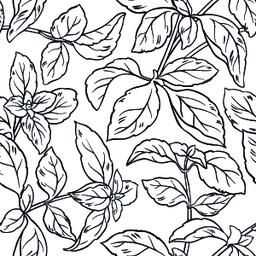 basil seamless pattern Vector