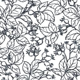 wild rose seamless pattern Vector
