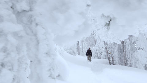 Crane shot of man in the cold forest Footage