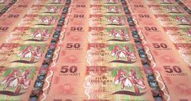Banknotes of fifty fijian dollars of Fiji rolling, cash money, loop Animation