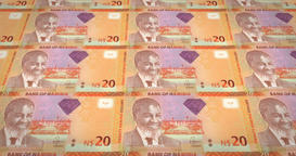 Banknotes of twenty namibian dollar of Namibia, cash money, loop Animation