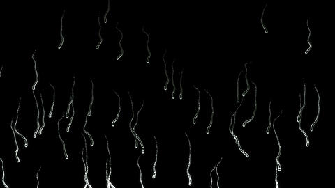 Liquid Drops falling down on glass on black background. seamless loop Animation