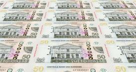 Banknotes of fifty Surinamese dollars of Suriname, cash money, loop Animation