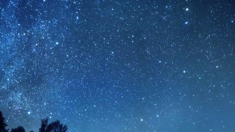 The stars revolve around a polar star in the background of the forest Footage