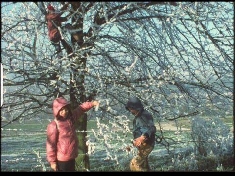 Kids in winter 8 Footage