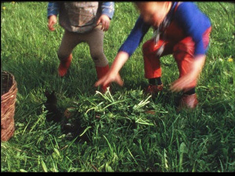 Kids playing with rabbit bunnies 3 Footage
