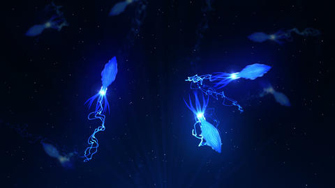 Squid Illuminated With Color Light In The Underwater, CG Animation, Loop Animation