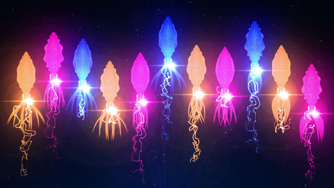 Squid Illuminated With Color Light In The Underwater, CG…, Stock Animation