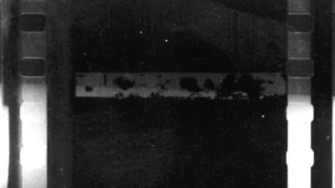 Film Noise 35mm 1
